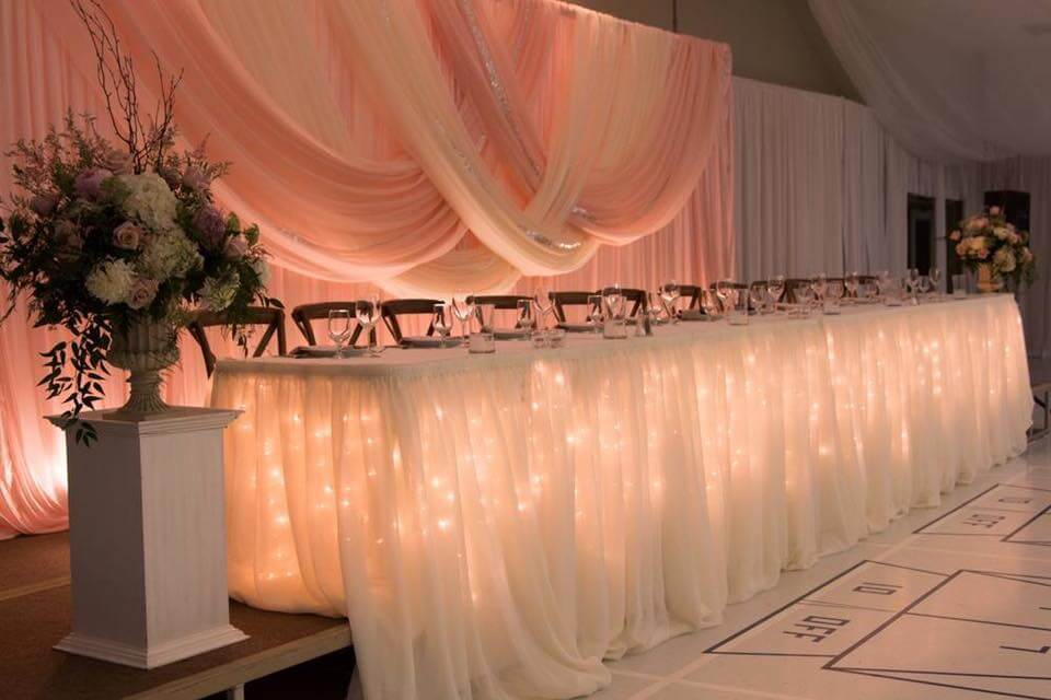 Blush Backdrop Dreams